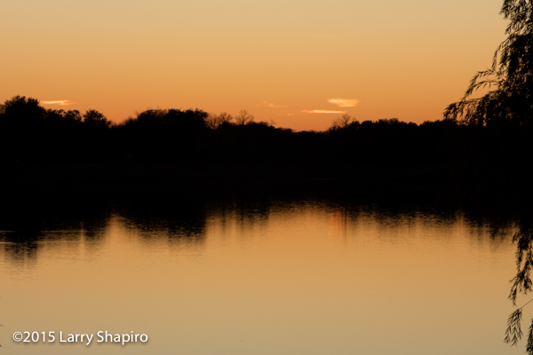 golden sunset reflected on a lake