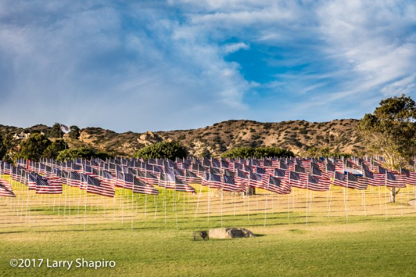 2977 flags to remember the victims of the 9/11 terrorist attacks