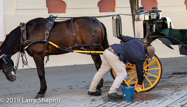 man cleaning wheels of horse-drawn carriage