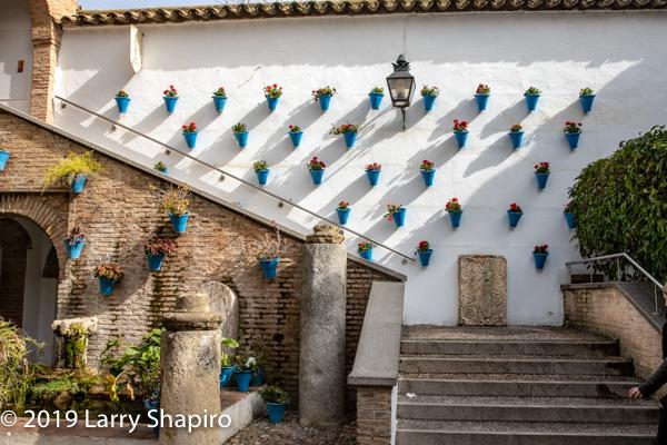 Beautiful Cordoba courtyard
