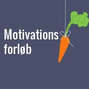 Motivation coaching forløb
