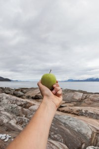 Apple, Fjord, Trail, Picnic, Pause, Fjord, Tromsö, Street Photography, Photo Book, Lars Hübner, Fotograf, Norway, Reportage, Visual Storytelling