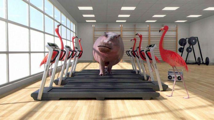 Athleticus - Salle d'entraînemen