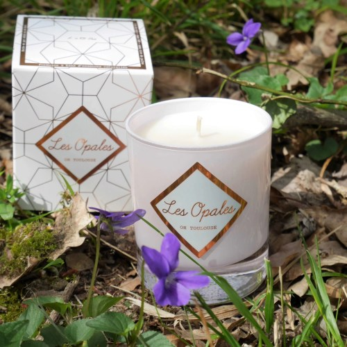 candle-toulouse-violet-blackcurrant