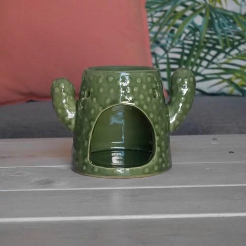 cactus-big-burner