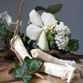 Bouquets / Compositions