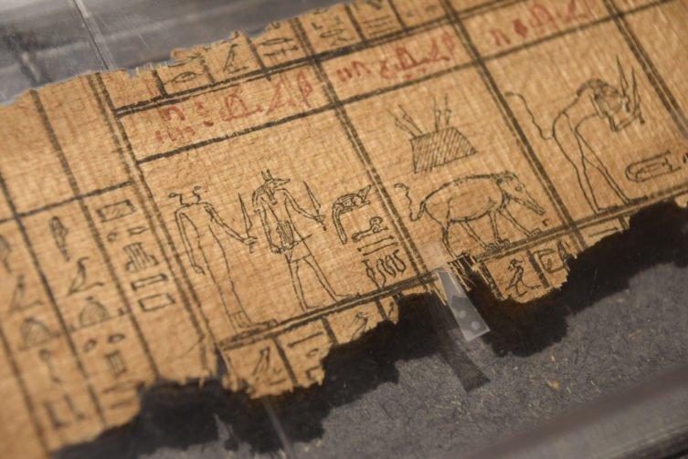 «L'Egypte en volumes et en image» : l'exposition du musée Médard à Lunel continue jusqu'au 26 septembre