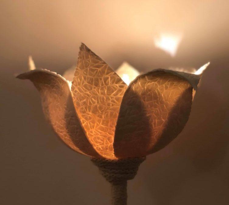 Stéphanie Titus propose «Flower» : une sculpture lumineuse en céramique