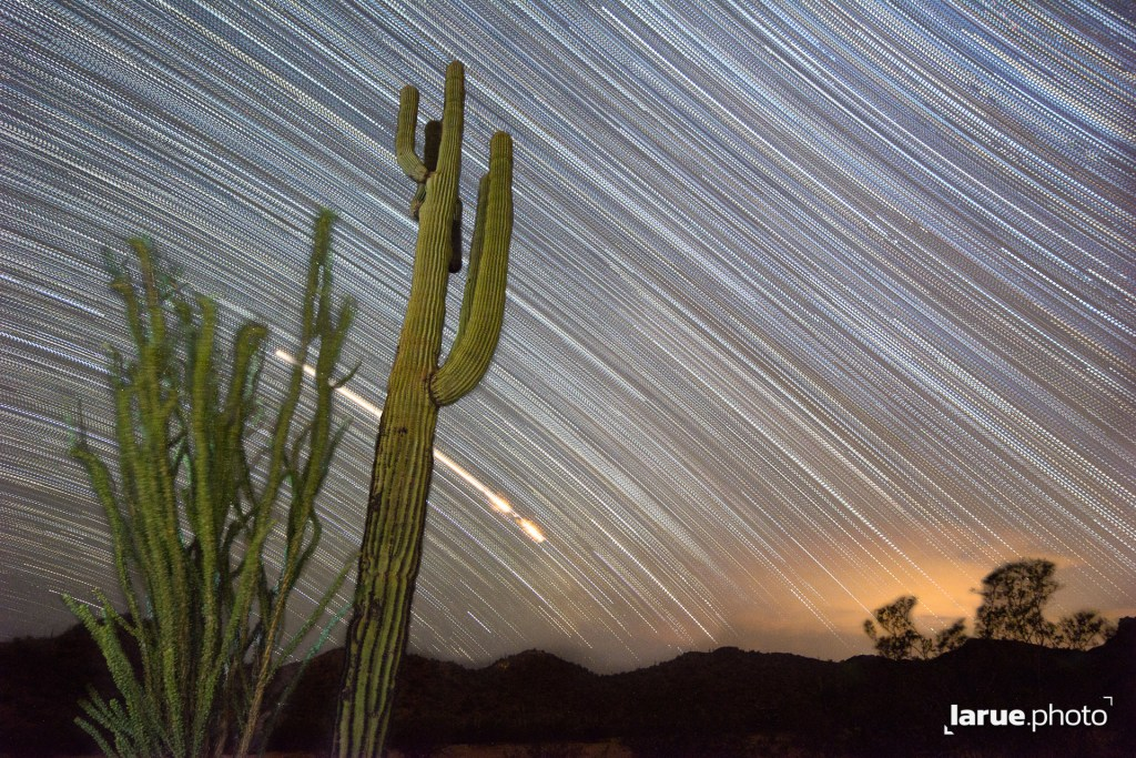 Sonoran Desert Startrails behind Saguaro and ocotillo cacti