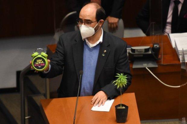 México vota despenalizar y regular el cannabis