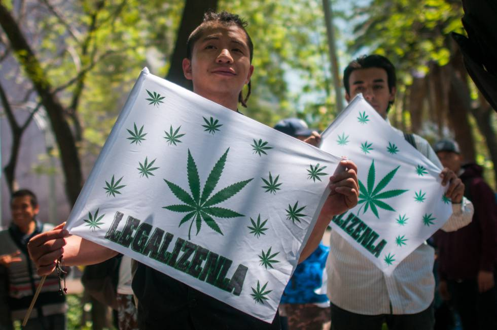 Marruecos y México avanzan en la legalización del cannabis