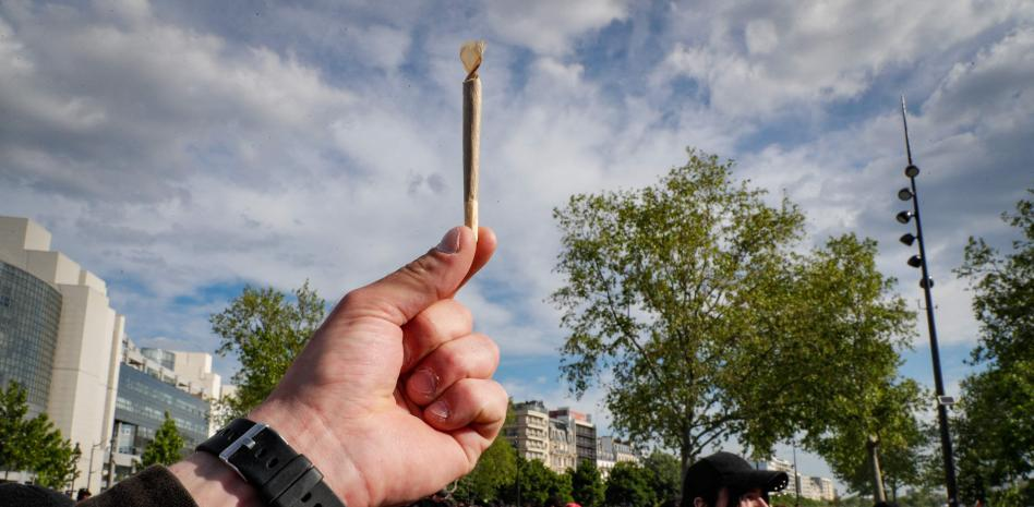 Cannabis, adolescentes y el uso sesgado de la información