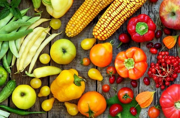 calendrier des fruits et légumes de l'année