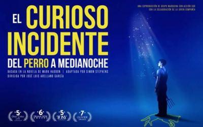 """Salida teatral en familia """"EL CURIOSO INCIDENTE DEL PERRO A MEDIANOCHE"""""""