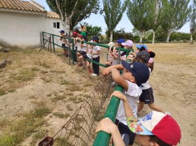 Granja 21 Escuela099