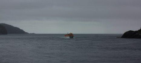 Llegamos al final del fiordo
