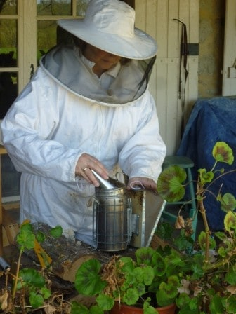 Bee-keeping at Las Cafourques