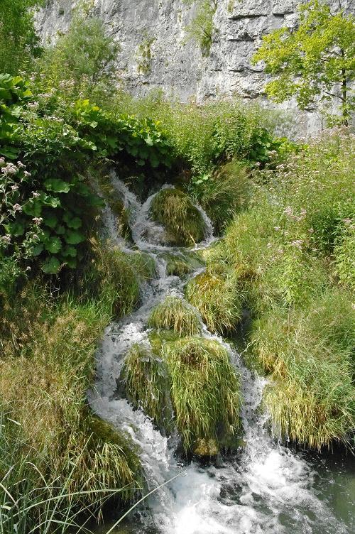 Cascades dans la verdure, parc de Plitvice