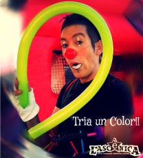 Triauncolor