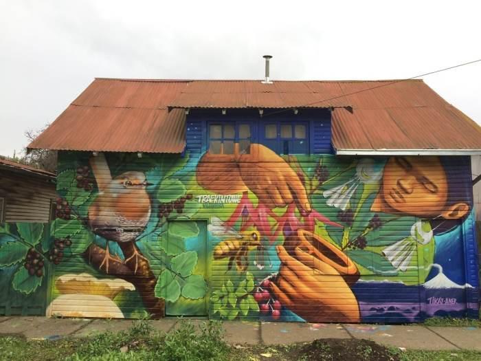 Muro finalizado en Trafkintuwe Villarrica, Aner - Tikay , mayo 2017