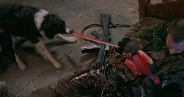 Dog Soldiers Perro