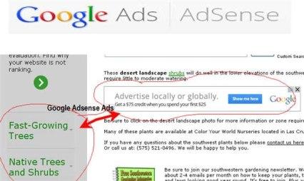 adsense-ads