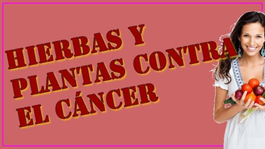 Plantas medicinales contra el cancer