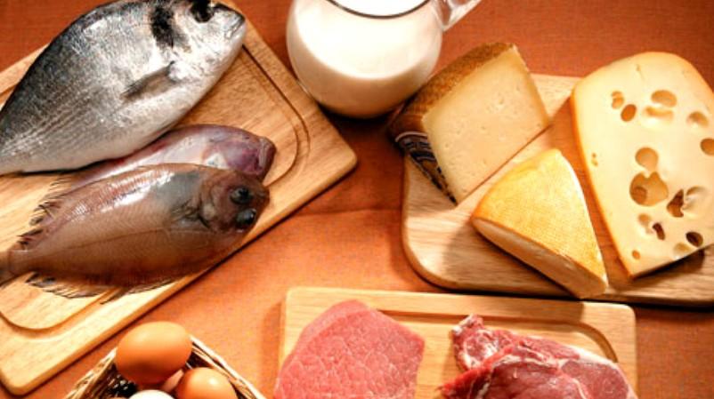 ¿ Las Dietas Proteícas Son Buenas ?