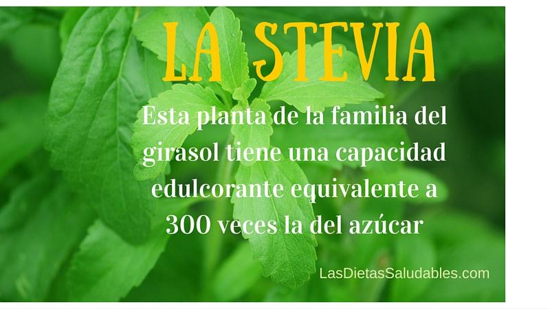 Stevia Propiedades y Contraindicaciones