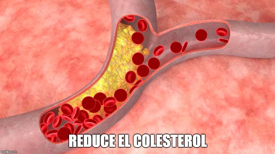 reduce el colesterol
