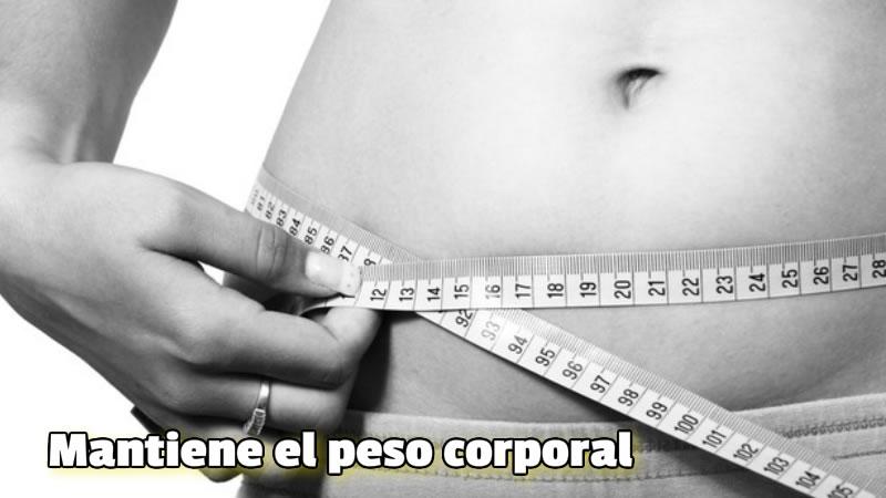 Mantiene el peso corporal