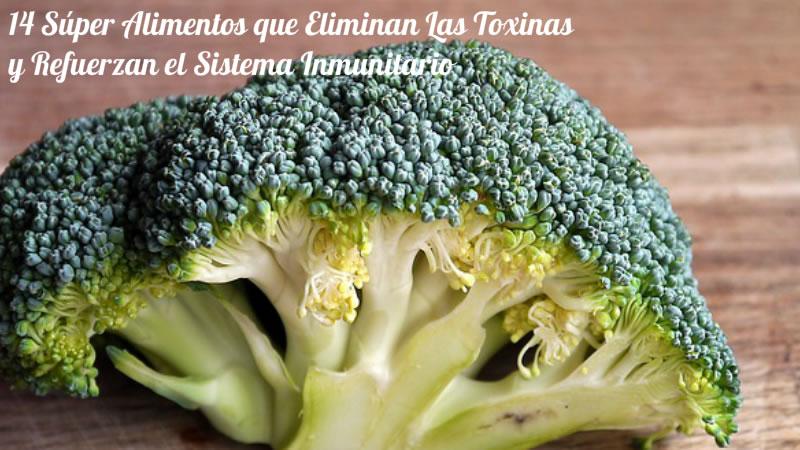 14 Súper Alimentos que Eliminan Las Toxinas y Refuerzan el Sistema Inmunitario