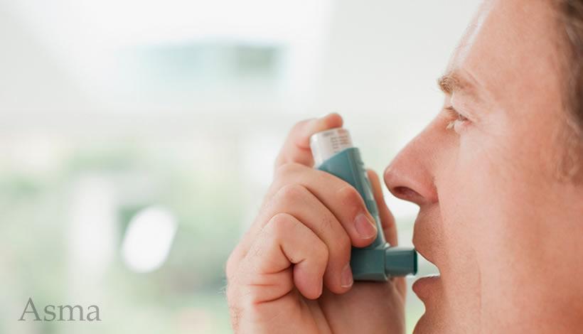 Las 10 Mejores Hierbas Para Tratar El Asma