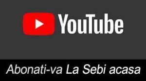 youtube La sebi acasa