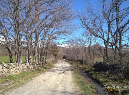 Camino a Braojos en plena Sierra