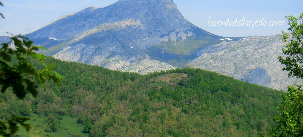 Pico Yordas