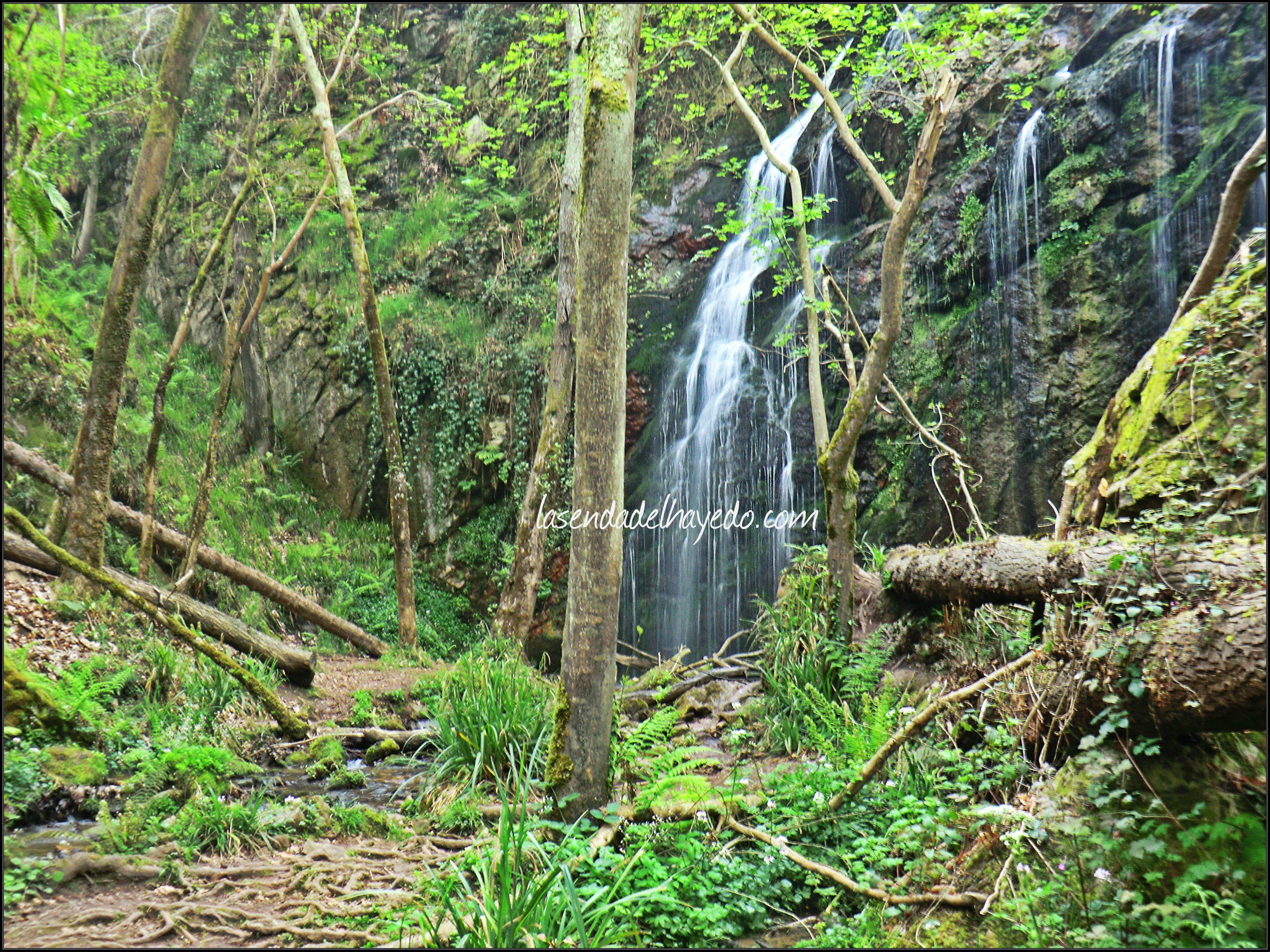 Cascadas de Guanga
