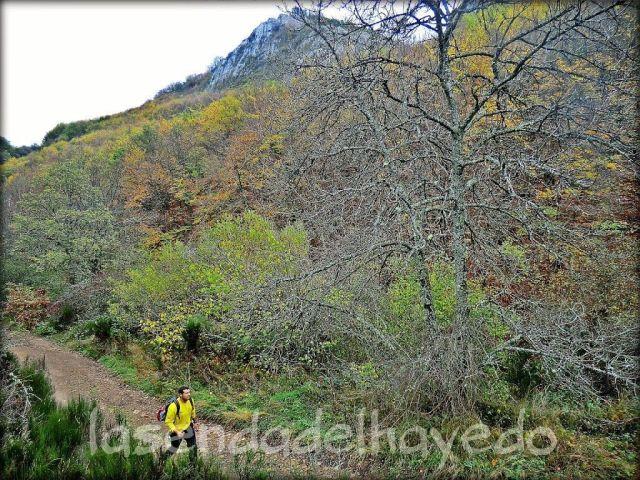Camino de ascenso a la collada de Llombera. Dejando el faedo a mano izquierda.