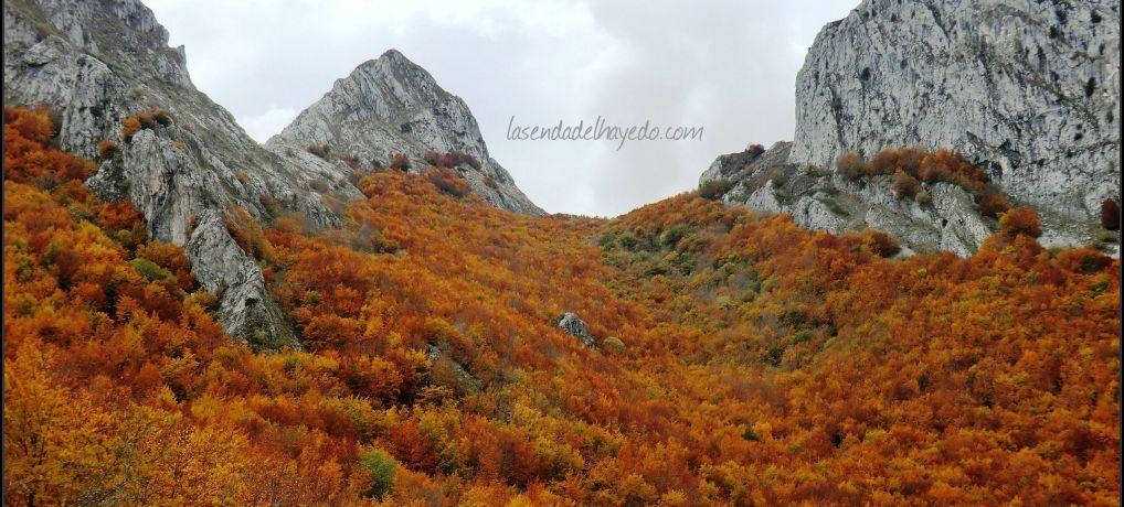 Pico Gilbo en otoño