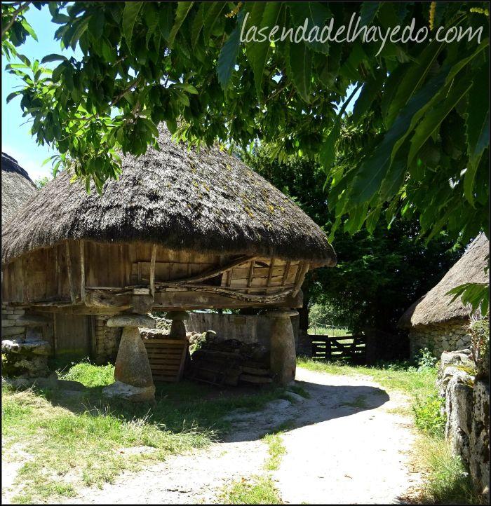 Hórreo con cubierta de teito en el pueblo lucense de Piornedo, vertiente Oeste de la Sierra de Ancares.