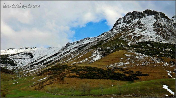 Los prados poco a poco van verdeando tras las tradicionales nevadas de marzo en la montaña leonesa
