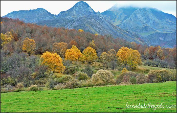 Riosol en otoño