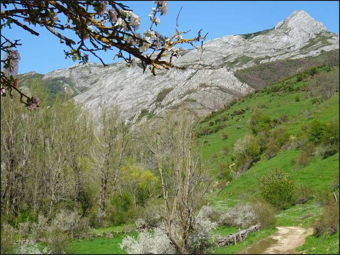 Valles y montañas de Reyero, en el Parque Regional de la Montaña de Riaño y Mampodre