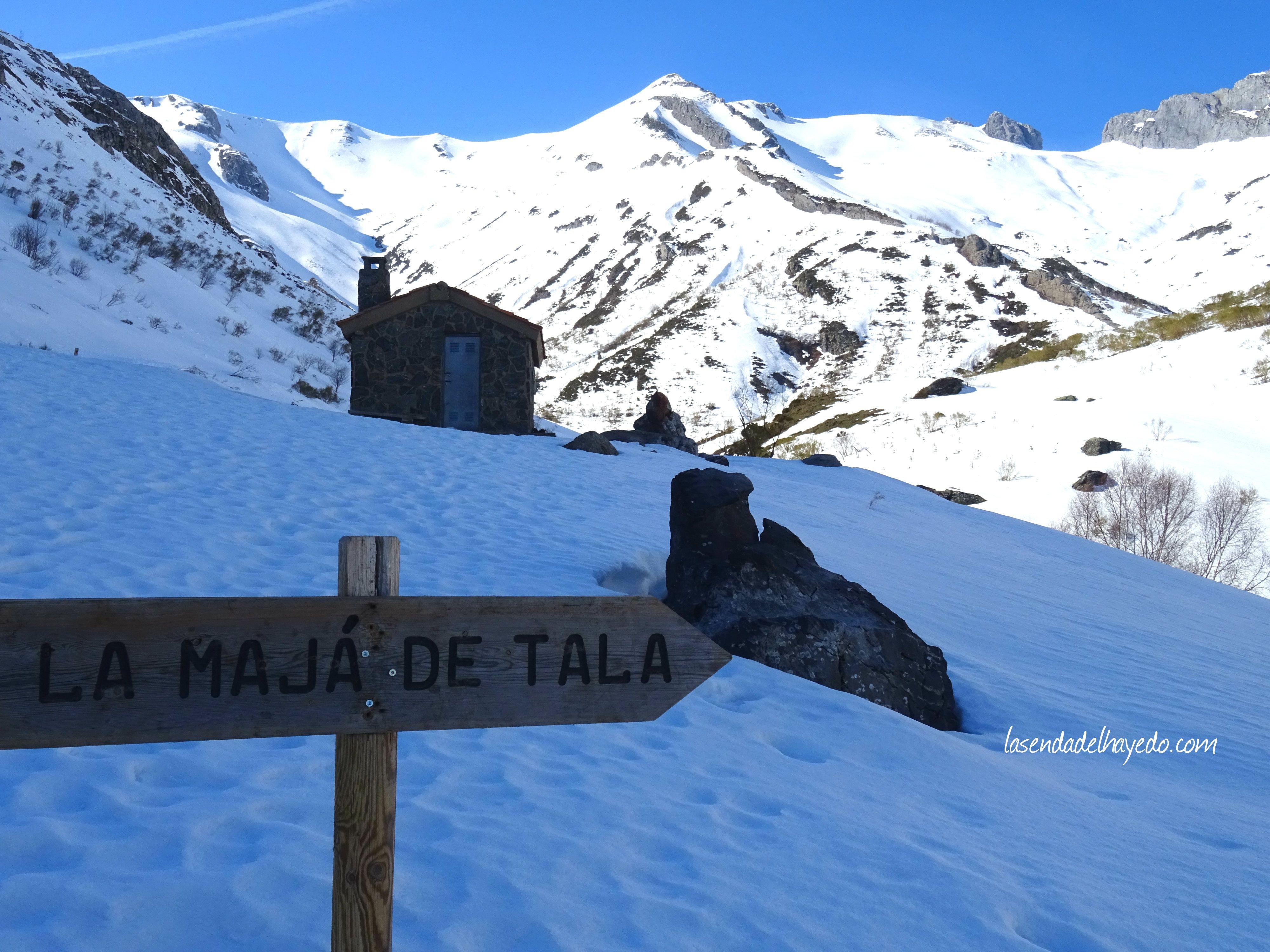 La Mayá de Tala