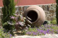 Jardín Solarium