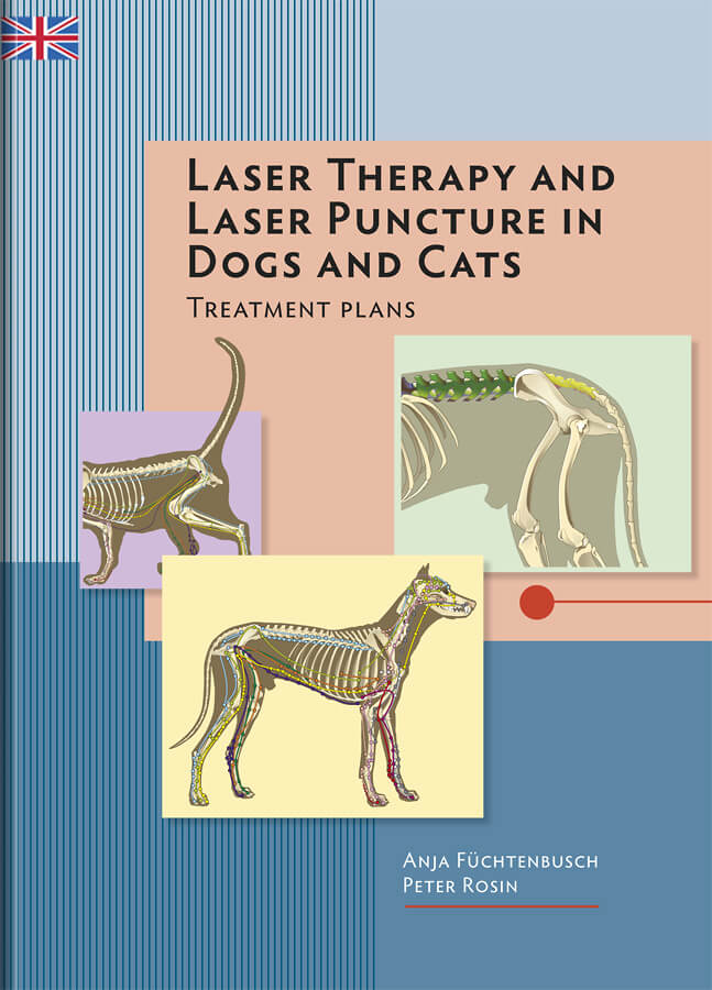 Canine laser therapy