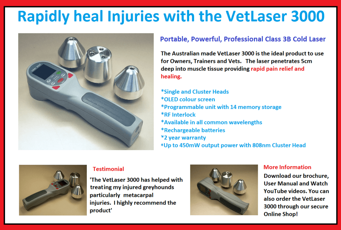 Single and Cluster Head VetLaser 3000