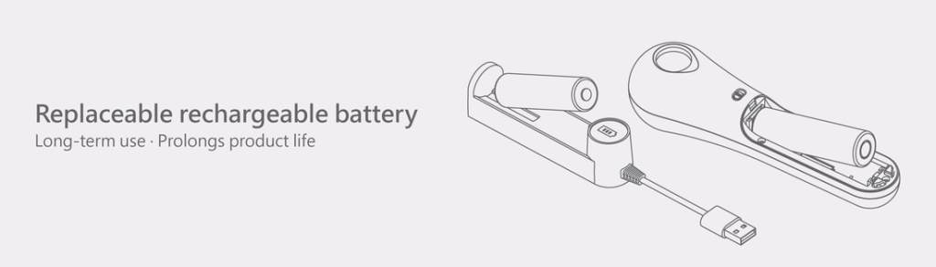 Replaceable rechargeable battery