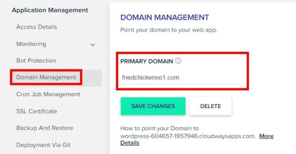 設定 Cloudways Domain Management