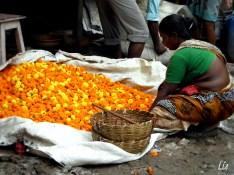 Flowers market, kolkata India